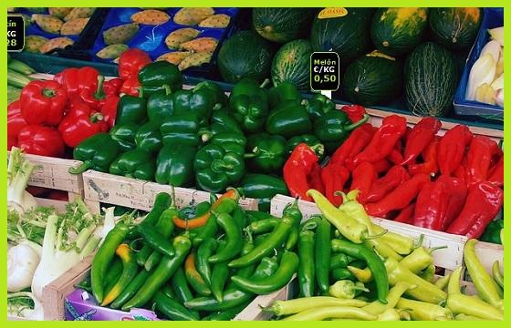 Semillas Verduras y Hortalizas
