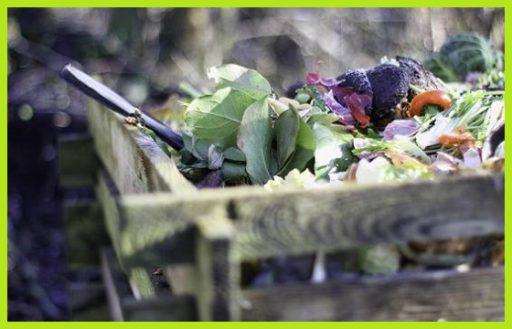 Fertilizante organico ecologico macronutrientes y micronutrientes www.abonosfertilizantesyplantas.com