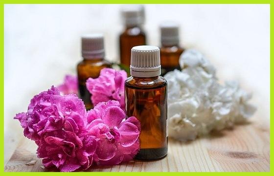 Ambientadores y neutralizadores de olor profesionales para cultivo de interior en el hogar www.abonosfertilizantesyplantas.com