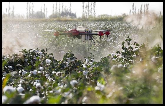 Drone pulverizador sulfatador insecticida fitosanitarios plantas www.abonosfertilizantesyplantas.com