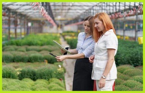 Generadores de Ozono para tratamiento de olores en cultivos de interior o indoor www.abonosfertilizantesyplantas.com