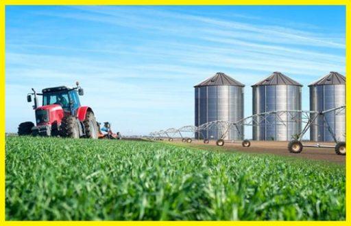 Sistemas de cultivo tierra hidroponico aeroponico www.abonosfertilizantesyplantas.com