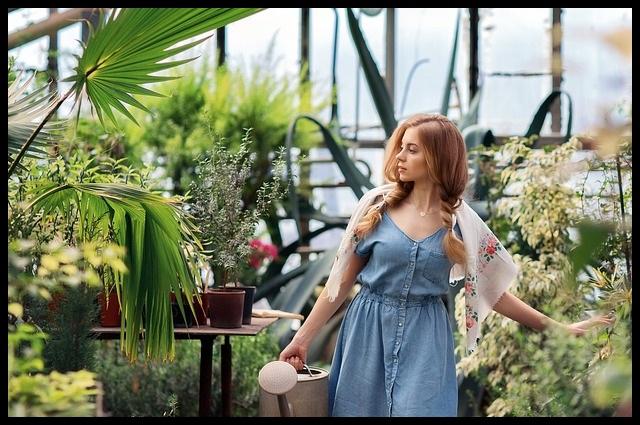 Tienda Online de Abonos, Fertilizantes y Plantas www.abonosfertilizantesyplantas.com